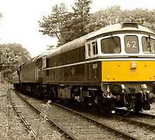 Crowcombe Crompton  by Rob Hawkins