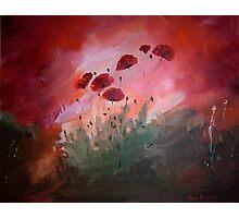 Poppy Field I Photographic Print