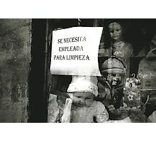 THE DOLLS ARE LOOKING FOR A NEW JANITOR Photographic Print