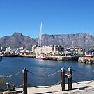 table mountain 1 by flower7027