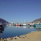boats in bay 1 by flower7027