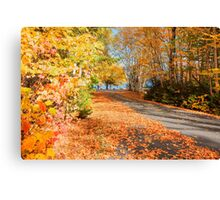 Fall colors, New England. Canvas Print