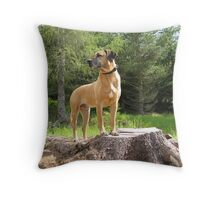 handsome pup 1 Throw Pillow