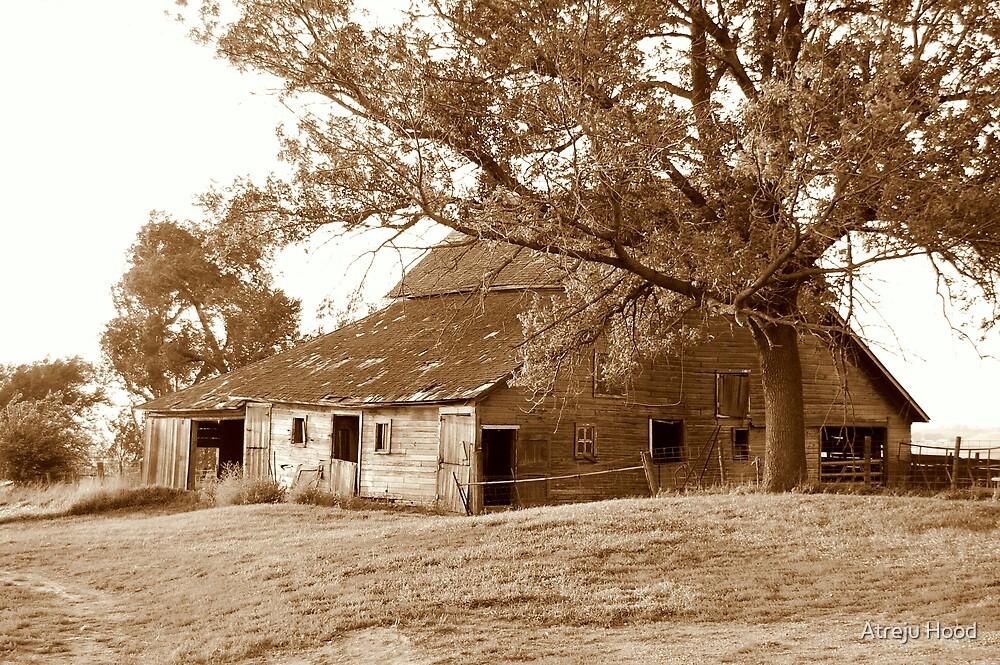 The Barn by Atreju Hood