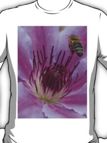 Honey Bee Landing On Nelly Moser Clematis  T-Shirt