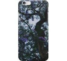 Los Feliz Bloom iPhone Case/Skin