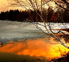 Reflections by Trenton Purdy