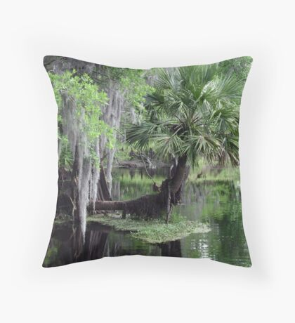 A Palm in the Park Throw Pillow