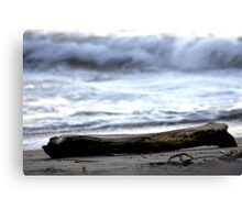 Lonely Log Canvas Print