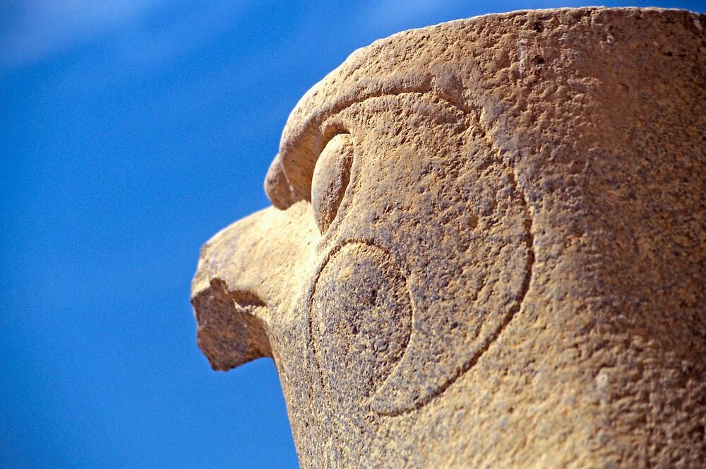 Statue of Horus in Edfu Temple by Petr Svarc