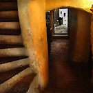 Cellar Stairs by culturequest