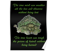 The Legend of Korra Lion Turle With Quote Poster