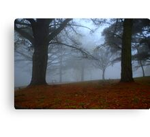 Fog Bound Canvas Print