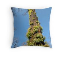 Bushfire Eucalyptus  Throw Pillow