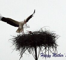 Happy Mother`s Day by Antanas