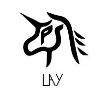 EXO Lay power logo Photographic Print