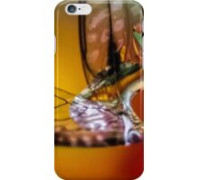 Celebration of Wings iPhone Case/Skin