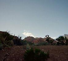 Desert Landscape (Disposable) by Snoboardnlife