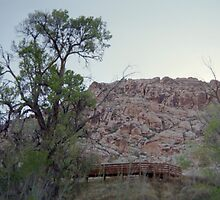 Calico Basin (Disposable) by Snoboardnlife