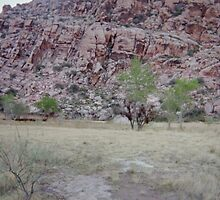 Calico Basin (Disposable) #4 by Snoboardnlife