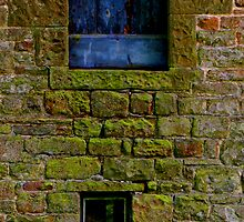Window & Door by Kenart