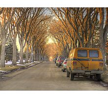 Spring Street (HDR) Photographic Print
