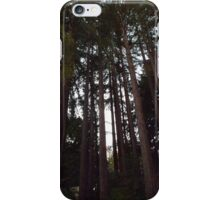 Tall Towering Redwoods iPhone Case/Skin