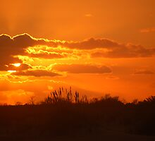 Sunset from Hatteras by Cinda Bivens