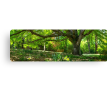 Perfectly Picturesque Pew Canvas Print