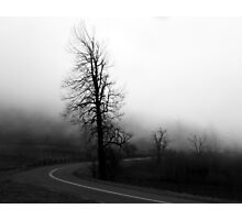 Proceed If You Dare Photographic Print