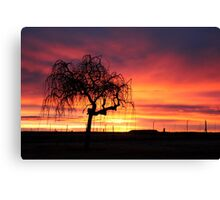 Tree skeleton in the sunset...  Canvas Print