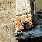 Rusted Bolt by tano
