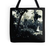 Faerie Queen Tote Bag