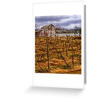 The Vineyard Greeting Card