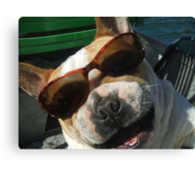 just the cutest frenchie in the whole wide world Canvas Print