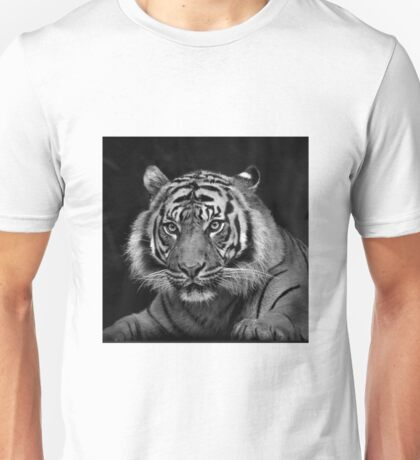 Tiger stare Unisex T-Shirt