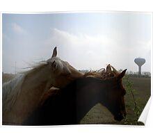 HORSE'N AROUND Poster