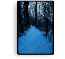 Walkin' down a winter path..In a world of blue Canvas Print