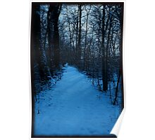 Walkin' down a winter path..In a world of blue Poster