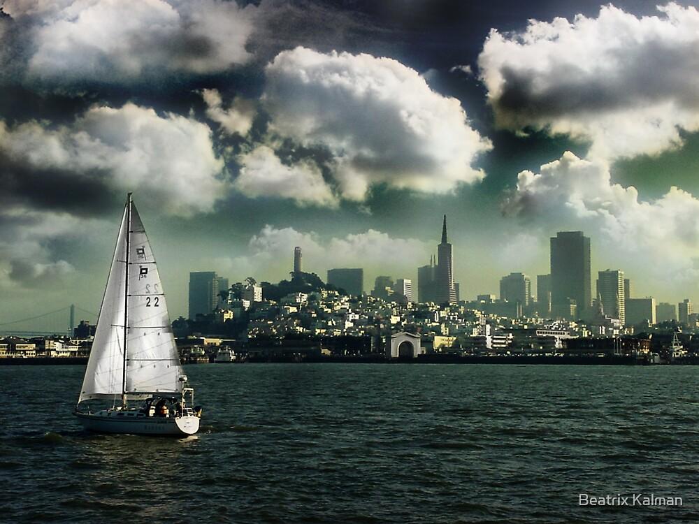Sailing on the Bay by Beatrix M Varga