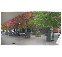 Corbett Plaza Bowral Poster