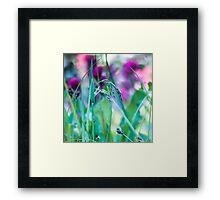 Vivid Grasses Framed Print