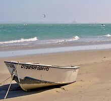 Boat on the beach by franceslewis