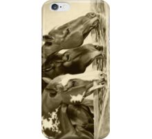 Drink'n Buddies iPhone Case/Skin