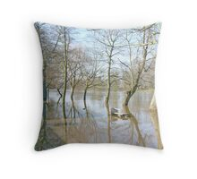 York's River Ouse In Flood Throw Pillow
