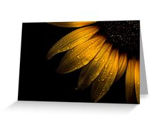 Backyard Flowers 28 Sunflower Greeting Card