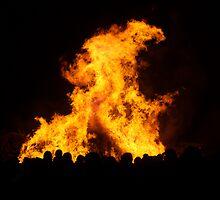 Bonfire by David Marshall