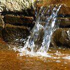 water stories by delfinada