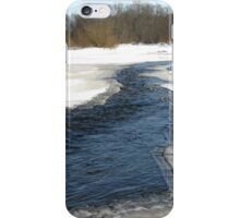 WINTRY SCEEN. iPhone Case/Skin
