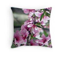last peach blossom Throw Pillow